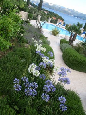 Adorable Sea View Villa with Swimming Pool near Dubrovnik