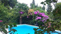 Villa with Pool and Garden near Beach in Mlini