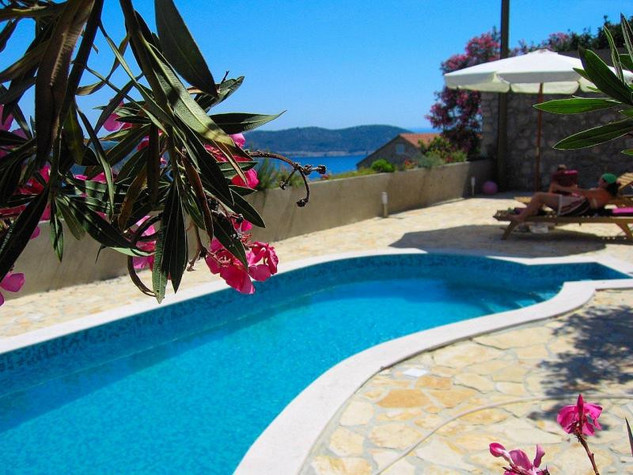 Croatia villa with pool Orasac