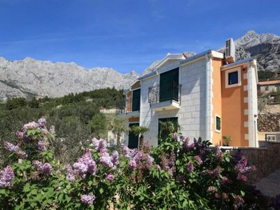 Exclusive villa with pool Makarska 1